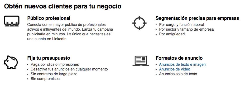 Opciones de segmentación - Linkedin para hacer negocios